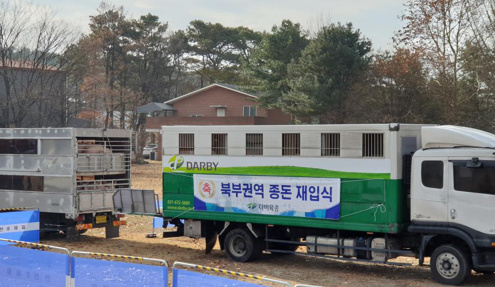 북부권역 종돈 재입식 현수막을 건 돼지 이동트럭